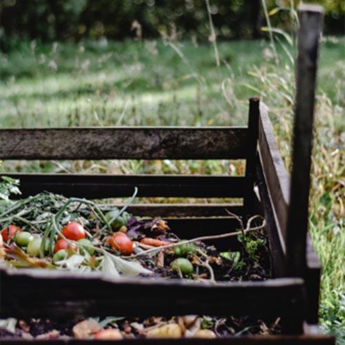 Biologisch Abbaubar, Kompostierbar oder Biobasiert?